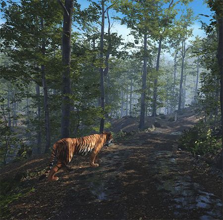 Big Cat Rescue VR 2